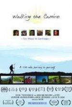 Walking The Camino: Six Ways To Santiago - Barney's Incorrect Five Second Reviews