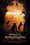 monkey poster.jpeg