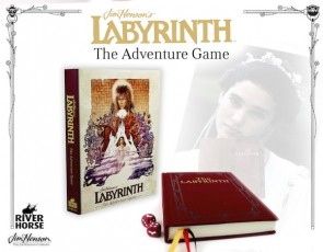 The Labyrinth Adventure Game