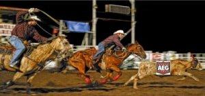 Barnestorming- AEG Review Rodeo, Freejack, I Assassin