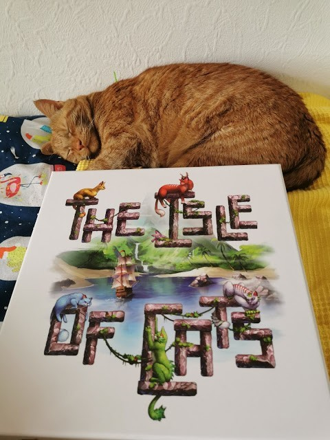 The Isle of Cats Board Game Review
